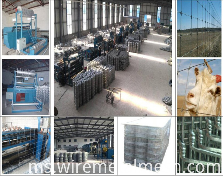 Electric Galvanized Cattle Fence combined picture