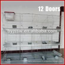 Cages d'élevage de lapin de livraison rapide pour les lapins femelles et jeunes