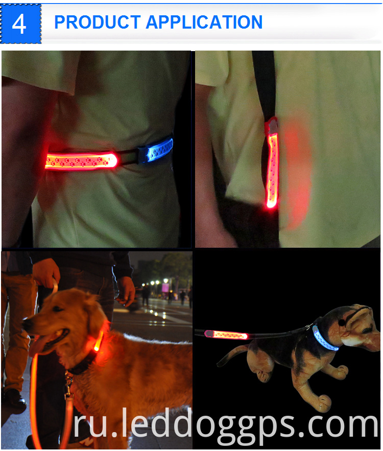 Safety Light For Dog Collar