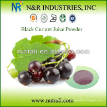 black currant juice powder water soluble