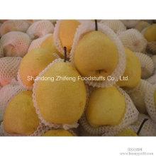 Pera fresca chinesa de Ya com boa qualidade