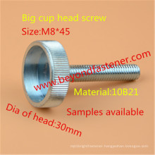 Cup Head Screw
