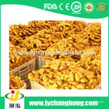 2015 new crop Shandong origin fresh gingers