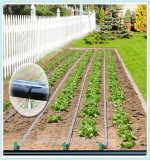 drip irrigation tape with round drippers