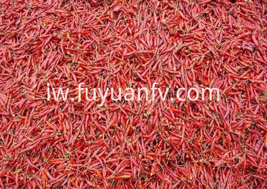 Chaotian Red Chili