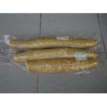 Neuer Ernte / hochwertiger / konkurrenzfähiger Preis / frischer Yam (35cm und oben)