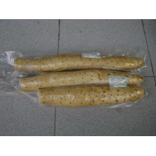 New Crop/Top Quality/Competitive Price/Fresh Yam (35cm and up)