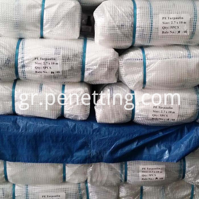 PE scaffold tarpaulin