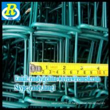 Anping galvanizado / PVC revestido Chain Link Fence / Chain Link malha