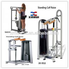 Machine de levage debout commerciale de veau pour la vente / haute qualité Équipement de forme physique faite de Chine / équipement de gymnastique de qualité chargée par Pin