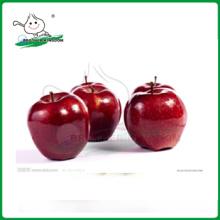 Manzana de manzana roja / manzana de huaniu / nueva alta calidad Manzanas frescas de huaniu roja de China