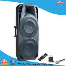 Double 15′′ Inch Professional Hifi Stag Speaker F86