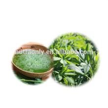 Pure natural green Organic alfalfa juice powder