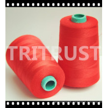 Expert in Sewing Thread (20s-60s)