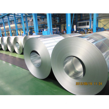 Galvanized Steel Coil, Strip (SSM-15261)