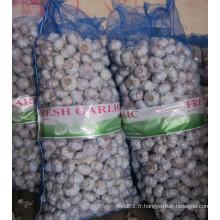 10kg Mesh Bag Normal ail blanc