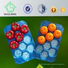 Chine SGS de fournisseur pour des plateaux jetables de fruit faits de norme 100% de sécurité alimentaire de polypropylène de Vierge
