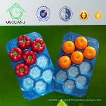 China Supplier SGS for Fruit Disposable Trays Made of 100% Virgin Polypropylene Food Safety Standard