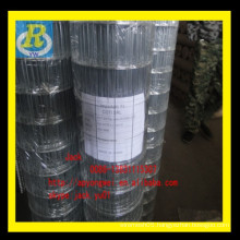 "1.5 inch welded wire mesh/1/2"" x1/2""galvanized welded wire mesh/1/4 galvanized heavy gauge welded wire mesh"