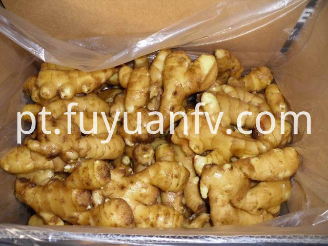 fresh ginger to Middle east