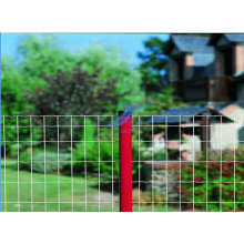 Holland Welded Wire Mesh Fence with Round Post