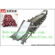 date classifier machine/vegetable and fruit sorting grader/Jujube grading machine