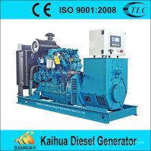 12kw alimenté par des groupes électrogènes diesel de Yuchai