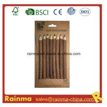 Crayon de couleur en bois de Twig de nature pour papeterie Eco