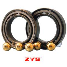 Rolamentos especiais da precisão de Zys-Rolamento com lubrificante contínuo