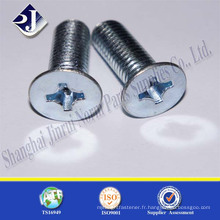 Alibaba Chine Fournisseur Best Quality Cross Recess Falt Head Screw