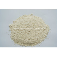 Garlic Powder 80-120 Mesh