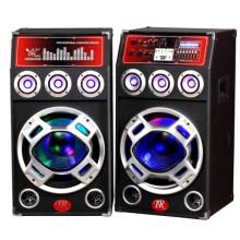 Professional Speaker TM-12