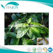 100% natural Extracto de raíz de mora de la India / radix Morindae Officinalis