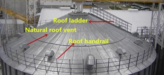 Silo roof