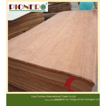 Chapa de madera cortada rotatoria y que corta con alta calidad