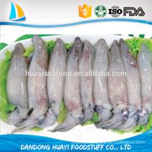 export top priority baby squid HACCP ISO FDA certificated
