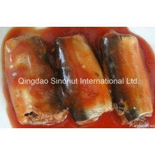 125g de sardine en conserve en sauce tomate avec piment