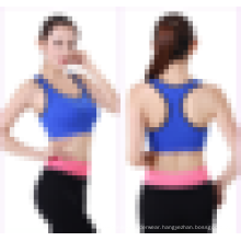 Seamless Ladies Activewear Snug Moisture Wicking Sport Bra