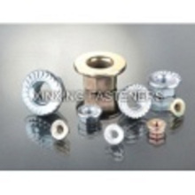 Stainless Steel Hex Flange Nuts