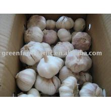 2011 самая низкая цена китайский свежий чеснок