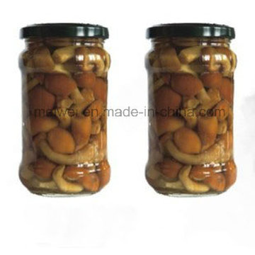 Canned Food Mushroom Canned Nameko with Best Price
