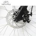 Top E Bike Low Competitive Price 26 pulgadas bicicleta eléctrica de la ciudad hecha en China