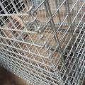 Cage de stabilisation pour palette pliante en acier