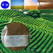 Ferric Compound Amino Acid Chelate