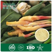 100% Natural Ginger Extract Powder/ Ginger Root Extract