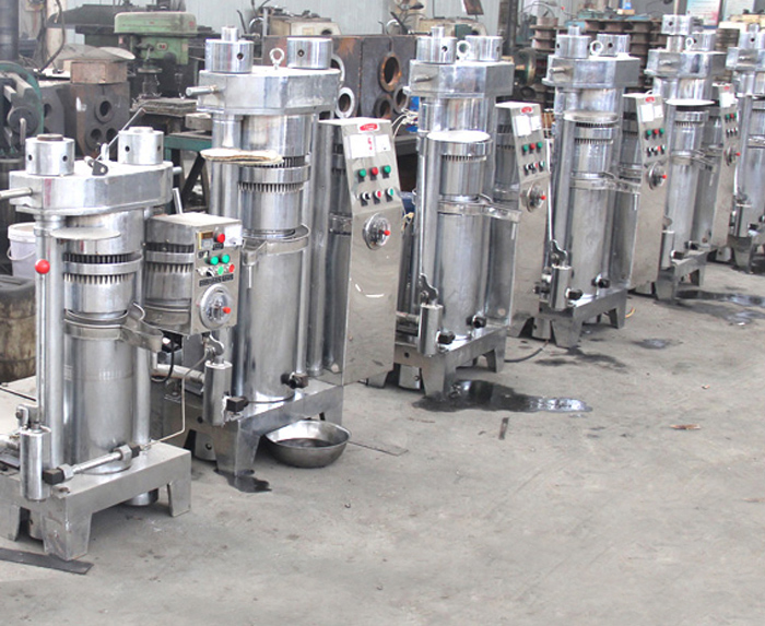 Oil Cold Press Machine