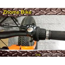 Fahrrad Teile/innere 3speed Nabe und Schalthebel abgeschlossen Sets SC3G41