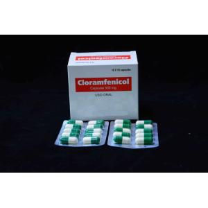 Manufacturing Companies for Quinolone Antimicrobial Chloramphenicol Capsule BP 500MG export to Western Sahara Suppliers