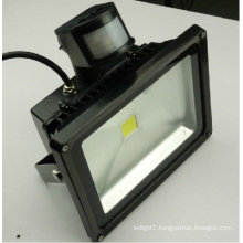 China 12v 24v 220v 230v 240v 50w flood lights pir