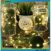 Festival Home Decoration Cooper Wire LED Holiday Light